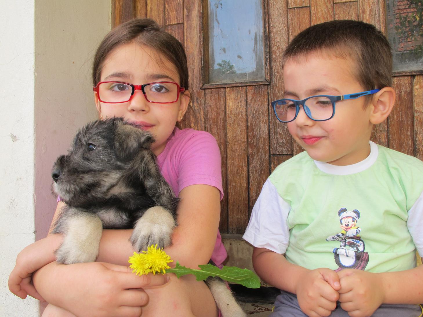 Children & schnauzer puppy